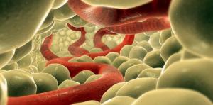 Фото опоясывающий лишай у человека симптомы лечение фото