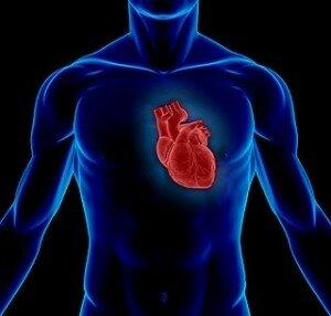 Острый трансмуральный инфаркт передней стенки левого желудочка: вылечить, диагностика, показатели, последствия