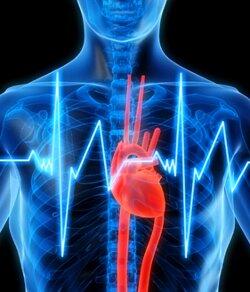 Тахикардия причины симптомы лечение ⋆ Лечение Сердца