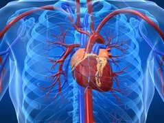 Хроническая сердечная недостаточность причины
