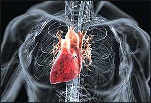 Диффузный кардиосклероз что это такое