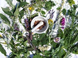 travy pri aritmii serdca 1 - Bylinky na srdeční arytmie ⋆ Léčba srdce, Jaké bylinky působí na srdce léčivě