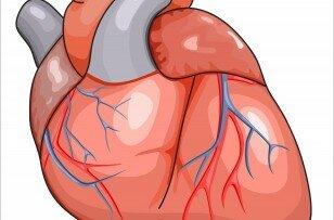 Перенесенный инфаркт на ногах какие последствия