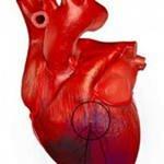 Острый инфаркт миокарда диагностика неотложная помощь