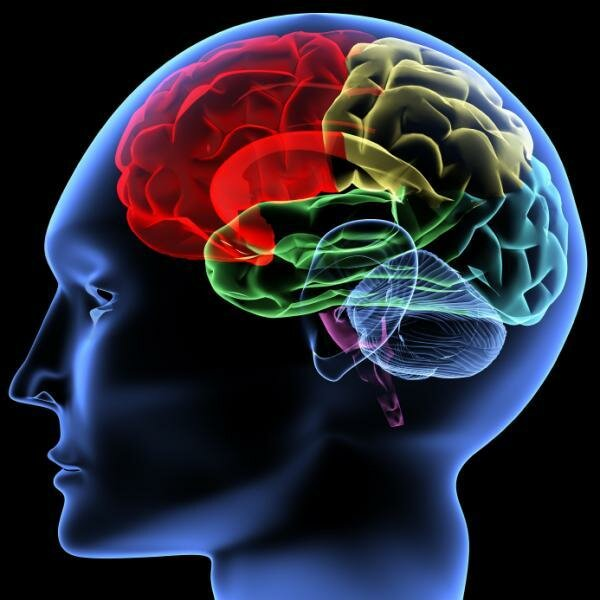 После инсульта как восстановиться - Всё о неврологии